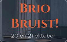 Brio-Website-3.0